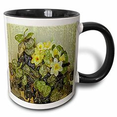 Jos Fauxtographee Realistic - Fake Yellow Flowers with Green Leaves at a Trailer Park Done in Plastic Against Green Wall - 11oz Two-Tone Black Mug (mug_52012_4) 3dRose http://www.amazon.com/dp/B013C2LIIK/ref=cm_sw_r_pi_dp_PsrYvb0EDA7PW