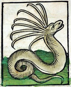 Hortus sanitatis Strassburg: Johann Prüss, not after 21 Oct. 1497 Inc iv 201 Folio 433 Medieval Manuscript, Medieval Art, Illuminated Manuscript, Mythological Creatures, Fantasy Creatures, Mythical Creatures, Dragons, Magnificent Beasts, Alchemy Art