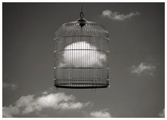 Jose Maria Rodriguez Madoz (born better known as Chema Madoz, is a Spanish photographer, best known for his black and white surrealist photographs. Surrealism Photography, Conceptual Photography, Fine Art Photography, Heart Photography, Vladimir Kush, Josephine Wall, Thomas Kinkade, Claude Monet, Poema Visual