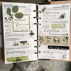 Meine letzte Woche im Filo Ich hatte soo viele Termine dass ich gar nicht früher zum dekorieren und Posten gekommen bin #wochendeko #wochendekoration #weeklyspread #weeklydecoration #filofax #filofaxing #nature #botanical #washitape #maskingtape #pilze #mushrooms #planner #weeklyplanning #crafting #stationery