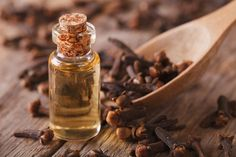 Clove bud oil is derived from the clove tree, a member of the Myrtaceae family. This tree is native to Southeast Asian countries like Indonesia. From the evergreen, you can derive three types of clove essential oils: clove bud oil, clove leaf oil and clove stem oil.