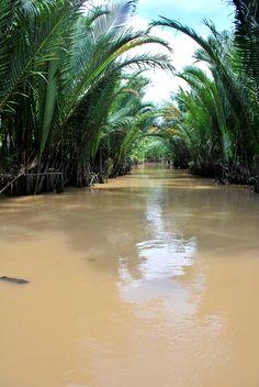 "Mekong Delta ""Nine Dragon"" river delta."