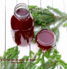 sirop din muguri de brad, cele mai articole despre sirop din muguri de brad Fancy Drinks, Health Snacks, Preserving Food, Dental Health, Preserves, Pickles, Health Tips, Smoothies, Deserts