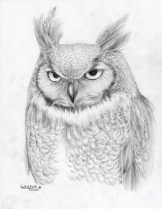 Great Horned Owl by CallieFink on DeviantArt