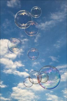 I like blowing bubbles outside and having my dog attack them