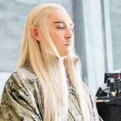 Elf king. Orlando Bloom Legolas, Elf King, Elvish, Lee Pace, Thranduil, Middle Earth, Tolkien, The Hobbit, Fantasy