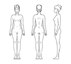 Female body by Microvector on Creative Market