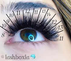 "1,213 Likes, 41 Comments - LashBox LA (@lashboxla) on Instagram: ""Today we want to share our favorite Lash map for multi-lengths wispy look this set is combination…"""