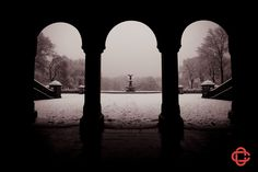 new york central park winter - Google Search