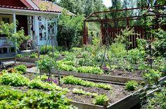 M/S DESIGN Trädgård och Keramik