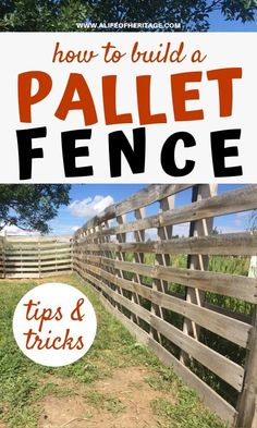 DIY Wood Pallet Fence for Goats, Sheep or even Small Pigs. Your livestock needs a fence to keep them in their boundaries and safe. This DIY project is so easy to make. Learn how to build a pallet fence and have it done in one day right in your backyard! This fencing option for small livestock is a great one to choose if you need a quick solution for a livestock pen that is low cost and easy to build! #raisinggoats #homesteadingskills #palletfence #livestock Diy Pallet Projects, Outdoor Projects, Garden Projects, Pallet Crafts, Wood Pallet Fence, Wood Pallets, Pallet Walls, Pallet Tv, Goat Fence