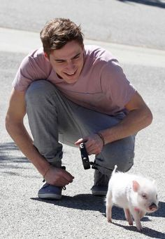 i want kendall schmidt..and a micro piggy