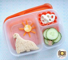 Cool Bento Box Lunch!