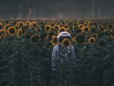 icognito by Denise Kwong #xemtvhay