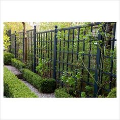 Black painted trellis/fence #1928