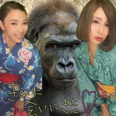 #浴衣で動物園 #東山動植物園 名古屋での #メインイベント www 話題の #イケメンゴリラ 彼に会うための #東山動植物園 浴衣ツアー  そしてこの浴衣着るために髪の毛暗くした笑  #kimono #yukata #浴衣 #着物 #pupuru #wifirental