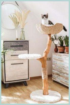 Modern Cat Furniture, Pet Furniture, Best Cat Tree, Homemade Cat Trees, Cat Home, Diy Cat Shelves, Wooden Cat Tree, Diy Cat Bed, Cool Cat Trees