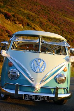 Safari Windows wedding: VW Transporter, Volkswagen minibus VW Van Type 1