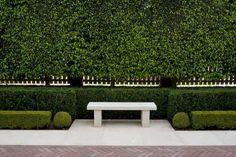 perfect hedges