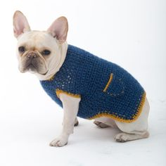 Crochet Dog Sweaters for Free