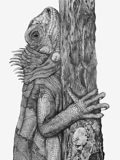 Iguana Pencil Illustration by Clay Thompson, via Behance