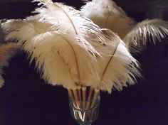 Beautiful ostrich feather pens