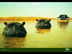 Hippos - Land Rover - RKCR/Y&R : AdForum.com