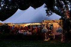 Summer Backyard Wedding Photos by Minda Davison Photography