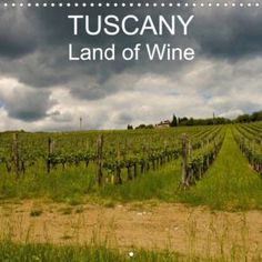 CALVENDO – Gallery Photo Calendar, All Year Round, Wine Wall, Tuscany, My Photos, That Look, Gallery, Pictures, Photos