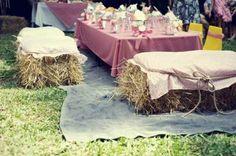 Farm  Birthday Party table setup