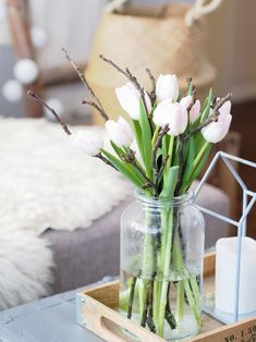 Tulips in our livingroom.