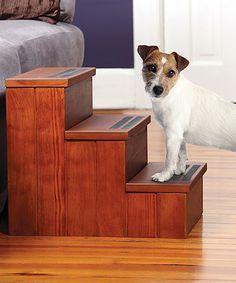 Pet Storage Steps by Etna Products #zulily #zulilyfinds