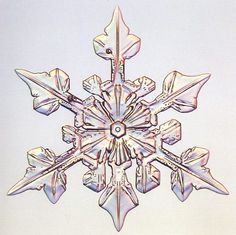 Three fold snowflake - Photo by Patricia Rasmussen