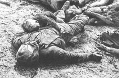 """""""Ich möchte keine Vorschläge haben, wie wir kriegswichtige Ziele im Umland von Dresden zerstören können, ich möchte Vorschläge haben, wie wir 600.000 Flüchtlinge aus Breslau in Dresden braten können."""" Churchill 1945"""