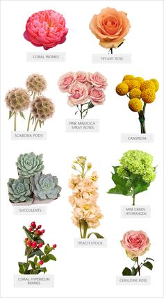 shades of summer bouquet recipe #diy #bouquetrecipe #weddingchicks http://bit.ly/1ma5ZPC
