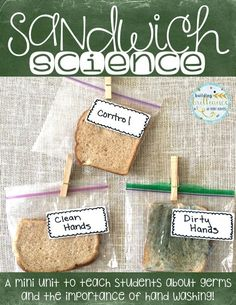 Perfect mini science unit for teaching students about germs and the importance of hand washing! Also great for science fair projects!