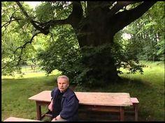 (129) Pamet stromu - 1.dil stromy se na nas divaji - YouTube Nasa, Culture, Music, Plants, Musica, Musik, Muziek, Plant, Music Activities