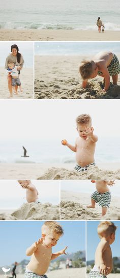 Toddler portrait. Family lifestyle portrait. Beach baby. Sea lion. Aliso Beach, CA. Orange County lifestyle photography.