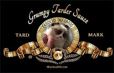 Coming Soon of the Day: Grumpy Cat Gets Garfield-Like Movie Deal