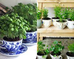 1- Parede decorada com espelho, prateleiras e hortas em vasos maiores! Olha como ampliou a cozinha!     Ultimamente me empolguei em fa...