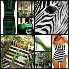 Black & White with a touch of deep green
