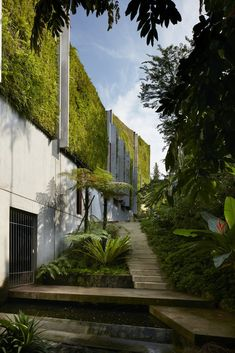 Gallery of Astrid Hill House / Tsao & McKown Architects - 7