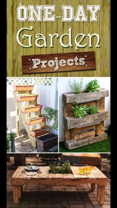 14 One Day Garden Projects