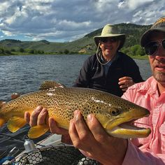 Photos of the Day: Epic Salmonfly Hatch on the Big Hole | Orvis News