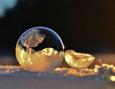 Frozen Bubbles Photography-1