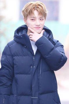 Woozi, Jeonghan, Wonwoo, Dino Seventeen, Seventeen Debut, Pledis Entertainment, Seungkwan, Boy Groups, Hip Hop