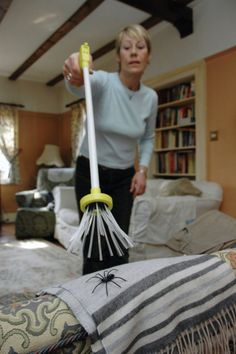 A spider-catching stick thingy that allows you to grab the spidey without hurting it and safety throw it the fuck outside as fast as possible.