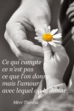 lafamillebricault.blogspot.com : la belle mère thérésa