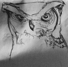 a sketch of a great-horned owl I did a few days agoo