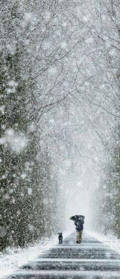 Winter Walk i love winter walks I Love Snow, I Love Winter, Winter Walk, Winter White, Long Winter, Maine Winter, 2015 Winter, Winter Schnee, Winter Magic